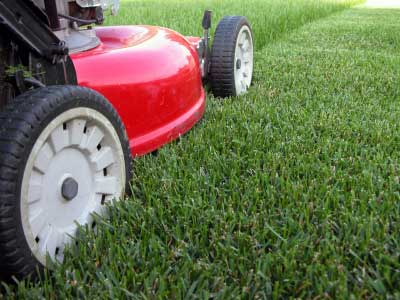 Florence Lawn Care Service