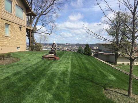 Lawn Care Service Florence
